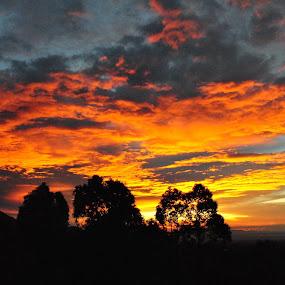 burning sky by Greg Crisostomo - Landscapes Sunsets & Sunrises ( clouds, mountains, colors, sunset, trees )