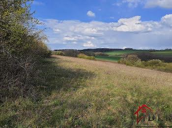 terrain à Montarlot les champlitte (70)