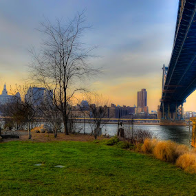 Brooklyn by Japie Scholtz - Buildings & Architecture Bridges & Suspended Structures ( water, structure, building, illar, tree, grass, bridge )