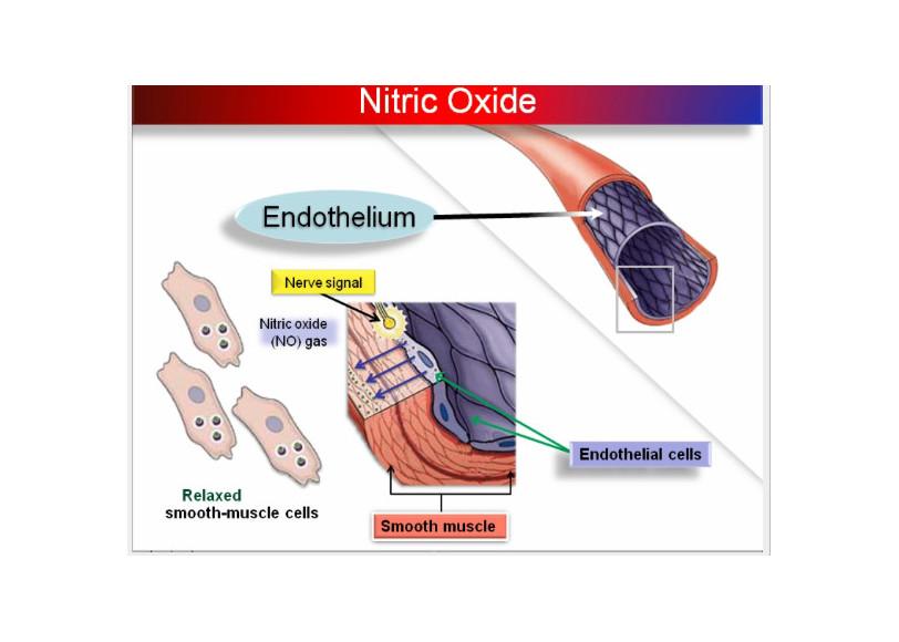 KAATSU påvirkning af vaskulær funktion.