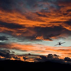 Flying home by Uroš Florjančič - Landscapes Weather