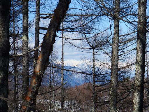 北アルプスの山が