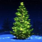 Christmas Music Tree Playlist Icon