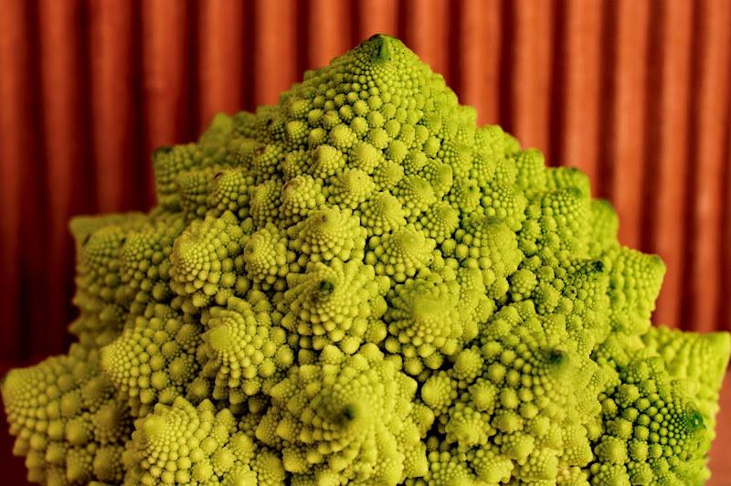 Spirali broccolose di Swanmartina