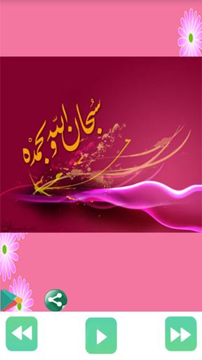 Holy Quran offline Ahmad Ajami