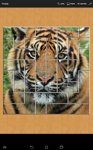 PICTRIS 写真のパズル