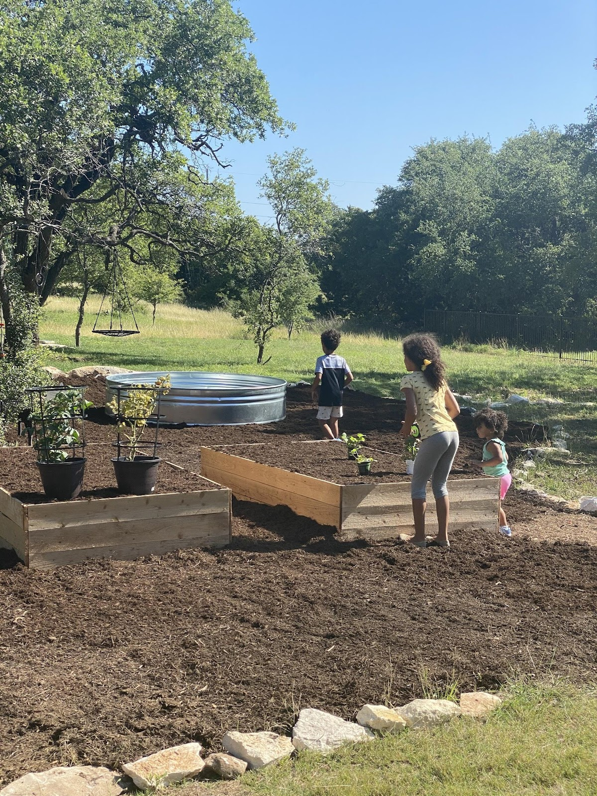 DIY backyard garden in progress.
