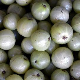phyllanthus Emblica. by Vinod Rajan - Food & Drink Fruits & Vegetables ( greenery, green, fruits, fruit, fruits and vegetables,  )