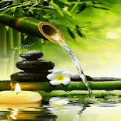 Bamboo Water Live Wallpaper