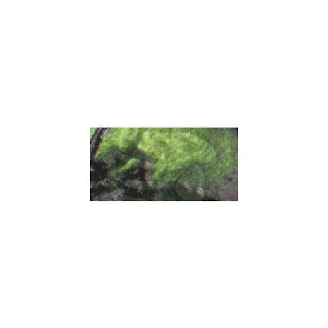 Prima Finnabair Art Alchemy Liquid Acrylic Paint 30ml - Avocado Green