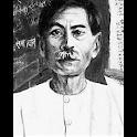 Munshi Premchand : Novels and Stories in Hindi icon