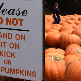Please do not... by Keith Heinly - Food & Drink Fruits & Vegetables ( farm, sign, burts, pumpkins, georgia )