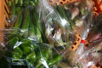 Photo: 岡田農園さん(駒木) みょうが、オクラ、ししとう 夏野菜が光っています
