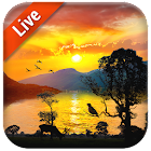 Free Sunrise Live Wallpaper icon