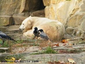 Photo: Ausruhen nach dem aufregenden Vormittag ;-)