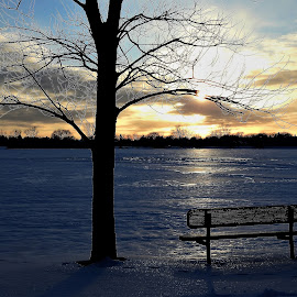 Inviting by Kathy Woods Booth - City,  Street & Park  City Parks ( glowing, park bench, reflections, sunset, winter, frosty, sundown )