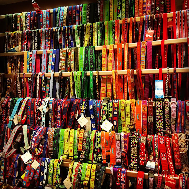 Hundreds of collars available at Fish & Bone.