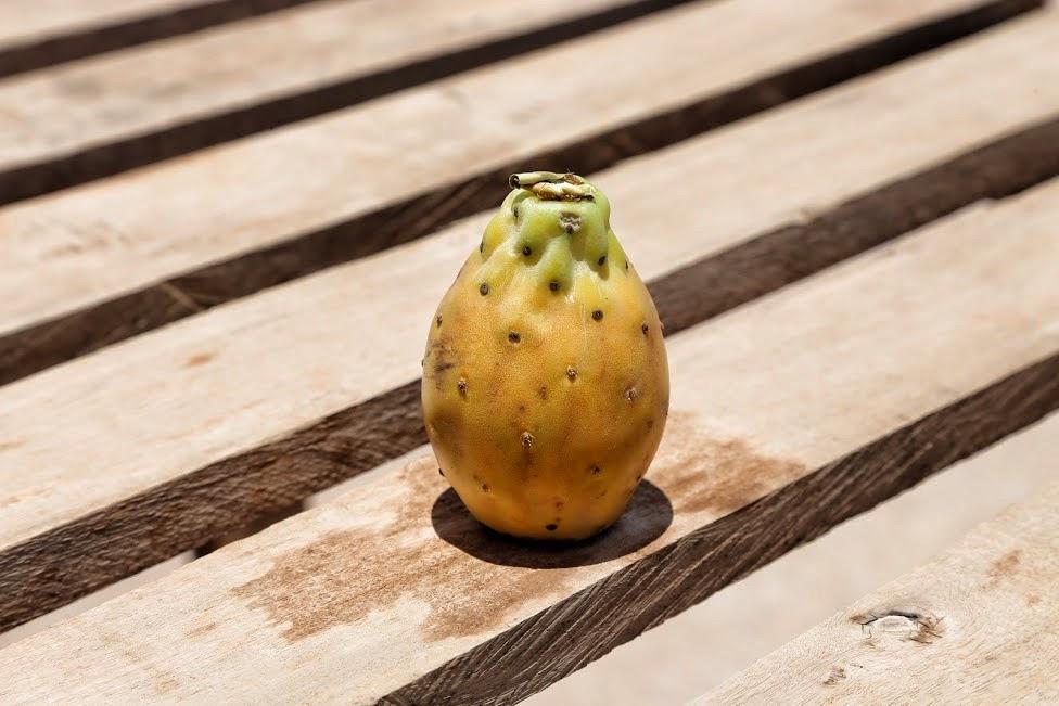 Egzotyczne owoce, Tuna