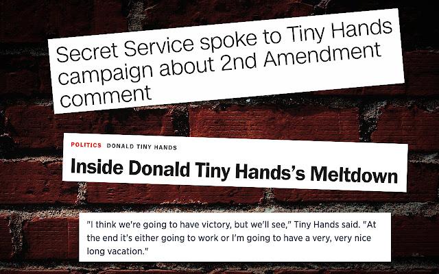 Donald Tiny Hands