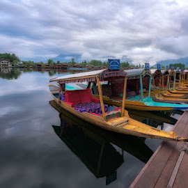 Waiting Shikaras, Srinagar, Jammu and Kashmir 2018 by Manabendra Dey - Transportation Boats ( dal lake, blue, shikara, boats, srinagar )