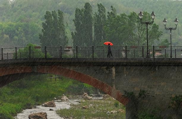 Pioggia di maggio... ma adesso basta! di mt antona