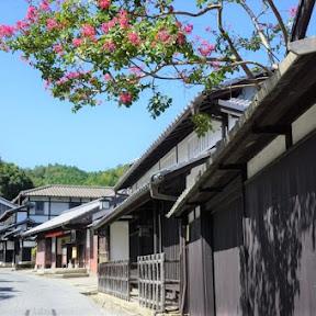 【日本の絶景】8000体超の石仏・石塔が並ぶ京都奥嵯峨野の「あだし野念仏寺」