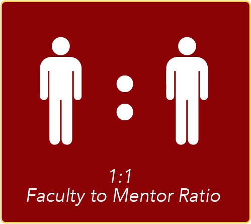 1:1 Faculty to Mentor Ratio