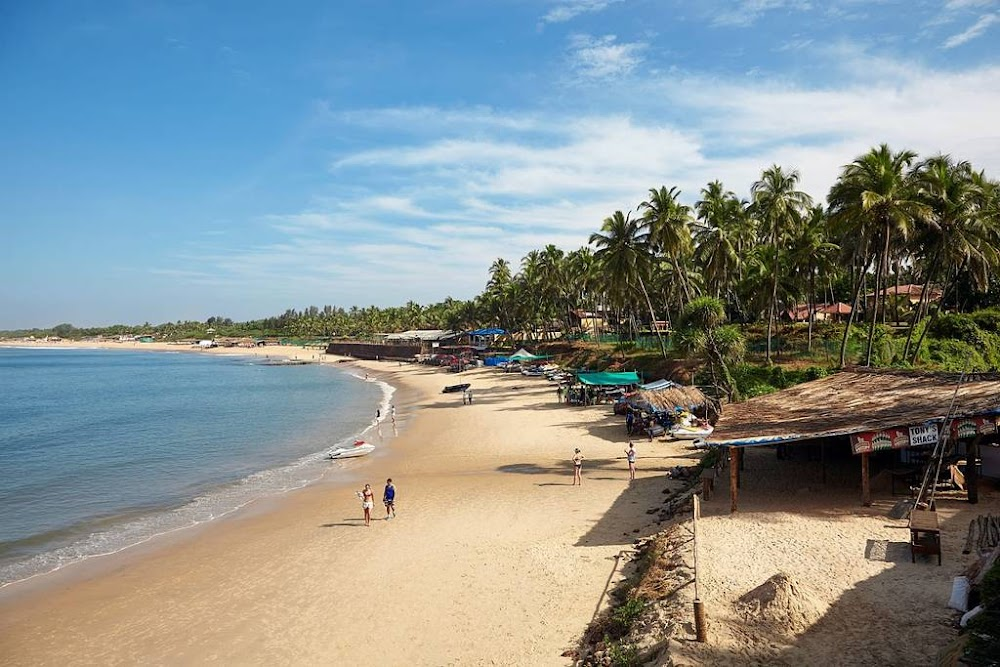 candolim-beach-best-beaches-in-goa_image