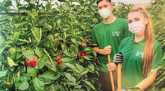 El delegado de Educación visita la Escuela Agraria de Vícar