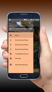 Kicau Burung Poksay Gacor Terbaru - náhled
