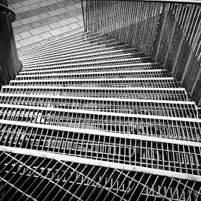 stairs  by Jocelyne Maucotel - Black & White Buildings & Architecture