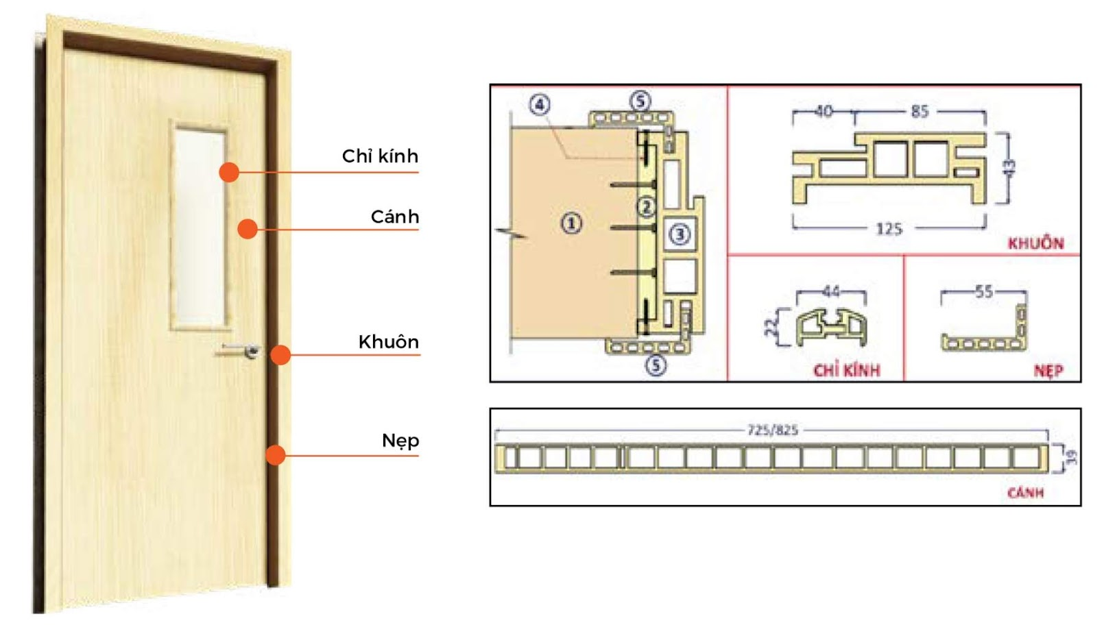 Mặt cắt chi tiết cấu tạo sản phẩm cửa gỗ Composite Eurowindow