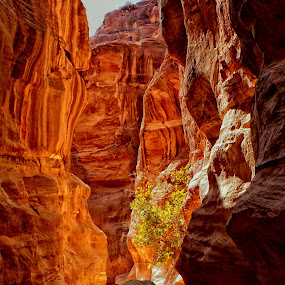 THE PASSAGE by Leon Zaragoza - Nature Up Close Rock & Stone ( travel locations monuments )