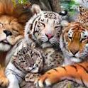 صور حيوانات  3D Animal Photos icon