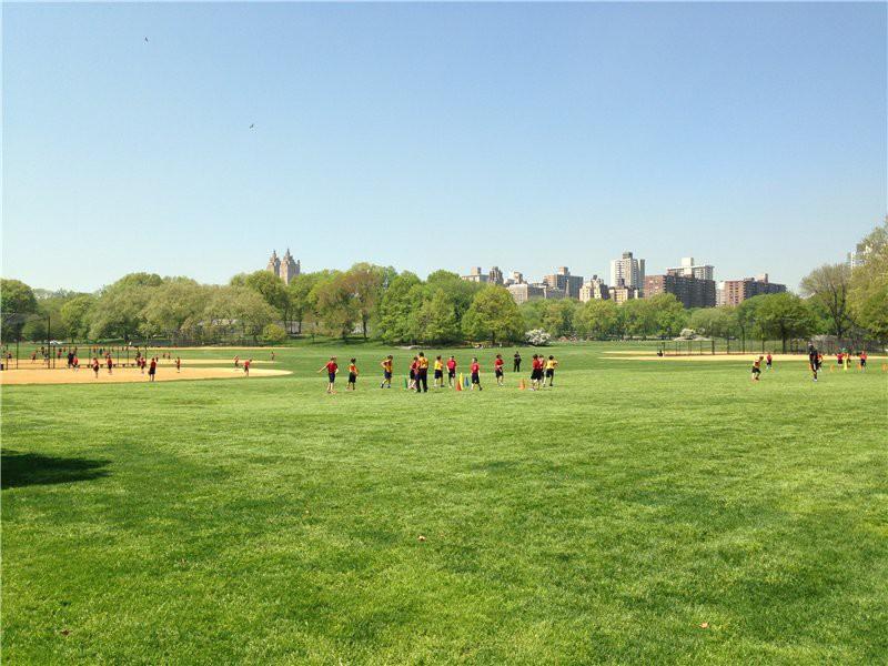 Манхеттен. Центральный парк. Настоящий газон и молодежь, спорт. США глазами туриста, туризм, факты