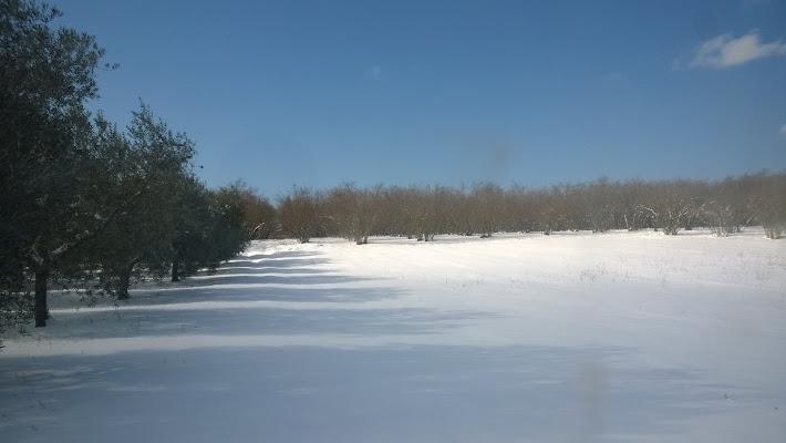 Le ombre nella neve... di Nikaele