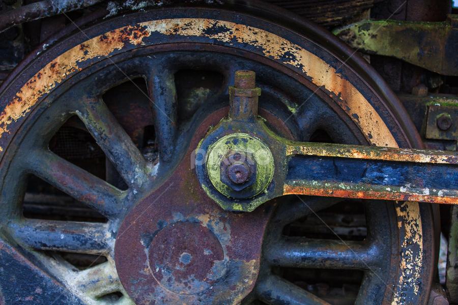 Railroad Decay by Briand Sanderson - Transportation Trains ( washington, snoqualmie, railway, railroad, museum, rust, decay )