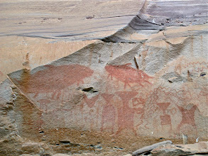 Photo: petroglyphs of giant river catfish and fish traps