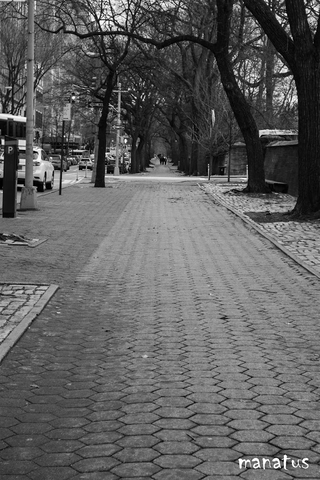 aledaños de Central park