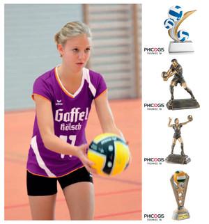équipement sportif pour volley-ball, coupe, trophée, médaille handball