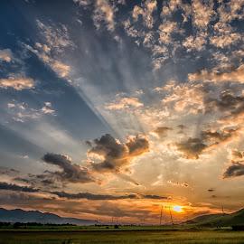 Sunset in the summer by Stefan Sorean - Landscapes Sunsets & Sunrises ( sunrise, road, palm, summer, landscape )