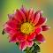 20141222_140055-Edit.jpg