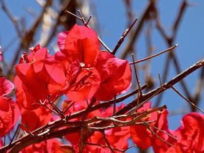 Photo: 130506 Djerba Jürg