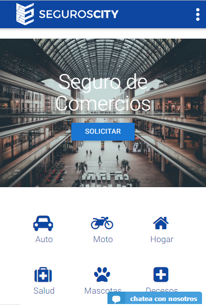 SegurosCity.com- screenshot