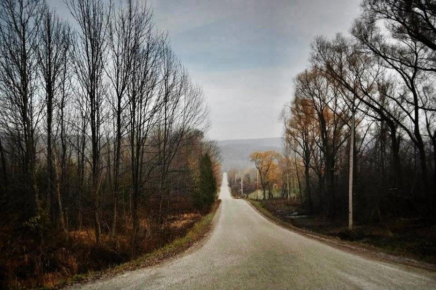 by Anabela Loureiro - Landscapes Prairies, Meadows & Fields