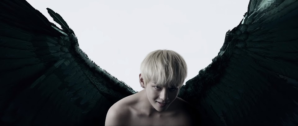wings3