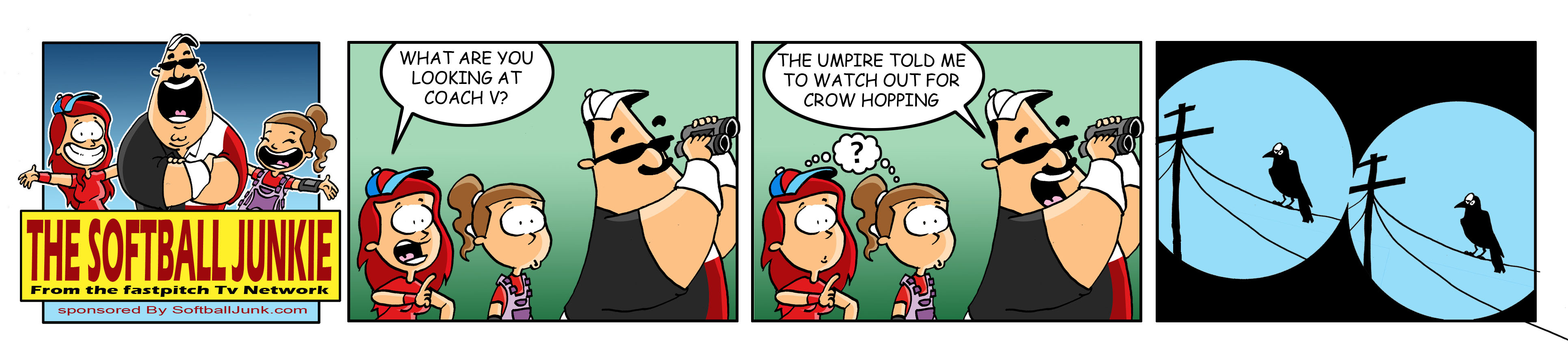Fastpitch Softball Junkie Comic 1