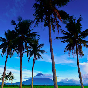 Mayon Volcano by Rodel Diaz - Nature Up Close Other Natural Objects