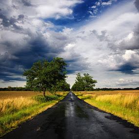 by Zsolt Zsigmond - Transportation Roads ( sky, rain, road, clouds, landscape, summer )