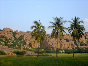 Photo: Moon over rocks, rice, and coconuts